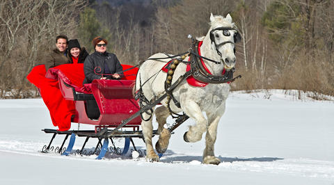 3 people in a sleigh being pulled by a horse